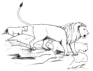 The Lion's Den - ©