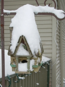 My birdhouse in the snow