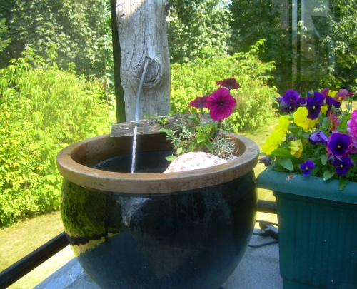 Fountain and Fish Pond - Carrie ©