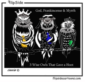 3 Wise Owls for Blog entry