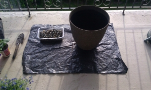 Plastic and pot set up