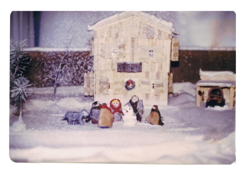 Fort Langley project winter scene
